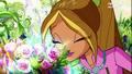 Flora~ Season Six