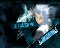 Toushiro Hitsugaya - toushirou-hitsugaya fan art