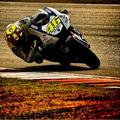 Vale (Sepang test 2) - valentino-rossi photo