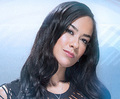 WWE Diva AJ Lee - wwe photo