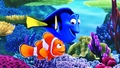 Disney•Pixar Wallpapers - Finding Nemo - walt-disney-characters wallpaper