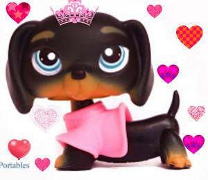 lps হৃদয় queen!