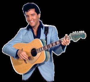 Fender elvis presley গিটার