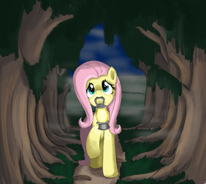 Fluttershy is Scared to go