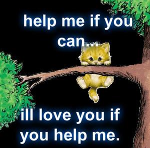 save me please...