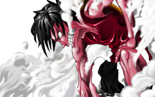 Monkey D Luffy Wallpaper Probably With A Bouquet Entitled
