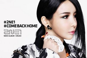 Official фото of 2NE1′s 'CRUSH' Album; розовый Edition