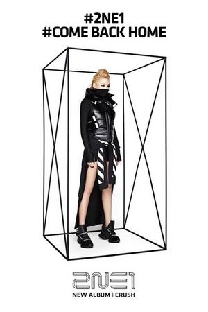 Official Photos of 2NE1′s 'CRUSH' Album; Black Edition