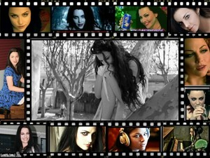 Amy Lee collage by me!