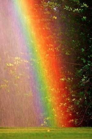 ..Rainbow..
