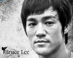 Bruce Jun Фан Lee(1940-1973)