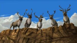 Caribou Crew
