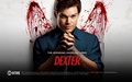 Dexter the show - dexter wallpaper