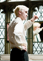 Draco                         - harry-potter photo