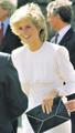 Fashion Icon - princess-diana photo