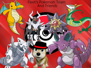Fleet's Pokemon Team