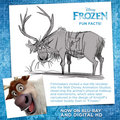 Frozen Fun Facts