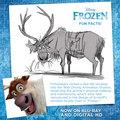 Frozen Fun Facts