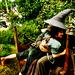 Gandalf    - ian-mckellen icon