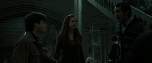 Ginny Harry