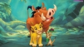 Hakuna Matata - the-lion-king wallpaper