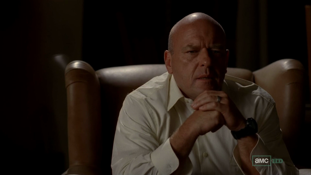 Hank Schrader images Hank Schrader - Breaking Bad HD ...