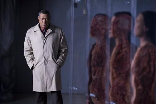 hannibal serie de televisión fondo de pantalla containing a business suit titled Hannibal - Episode 2.05 - Mukozuke
