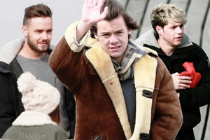 Harry, Niall and Liam 2014