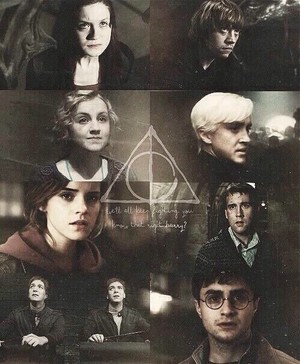 Harry Potter the Heroes