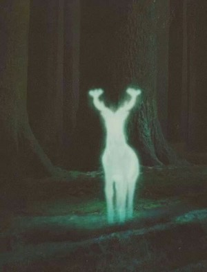 Harry's Patronus in Prisoner of Askaban♥