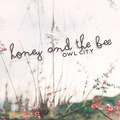 Honey and the Bee - owl-city photo