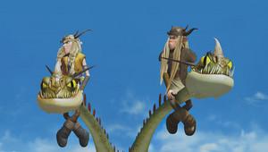 Riders and Defenders of Berk Screencaps