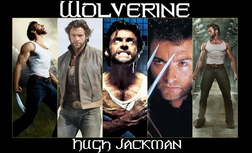 Hugh Jackman as Wolverine wallpaper with animê entitled Hugh Jackman as wolverine