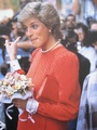Humanitarian - princess-diana photo