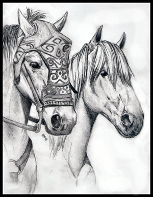 Arod and Shadowfax bởi equine-mirages