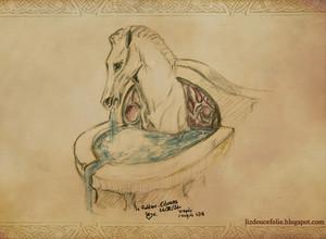 Edoras Rohan detail 由 LizDouceFolie