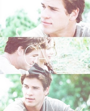 Katniss and Gale ✧