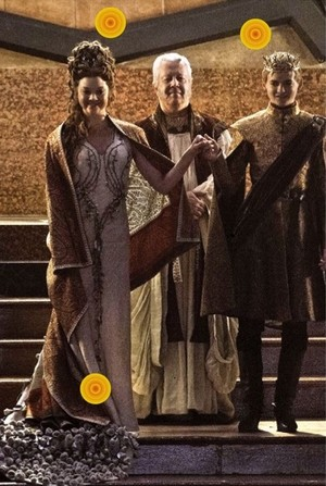 King Joffrey's wedding