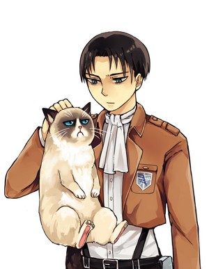Levi and the grumpy cat