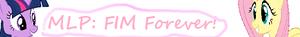 MLP FiM Forever