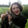 Maisie Williams - game-of-thrones photo