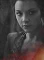 Margaery Tyrell Season 4 - game-of-thrones photo