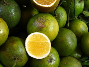 Market Limes