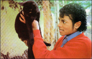 Michael Holding A Cat