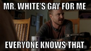 Mr. White's Gay for me!