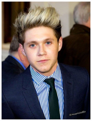 One Direction wallpaper containing a business suit, a suit, and a pinstripe called Niall Horan 2014