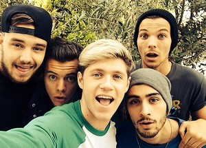 One Direction Selfie 2014