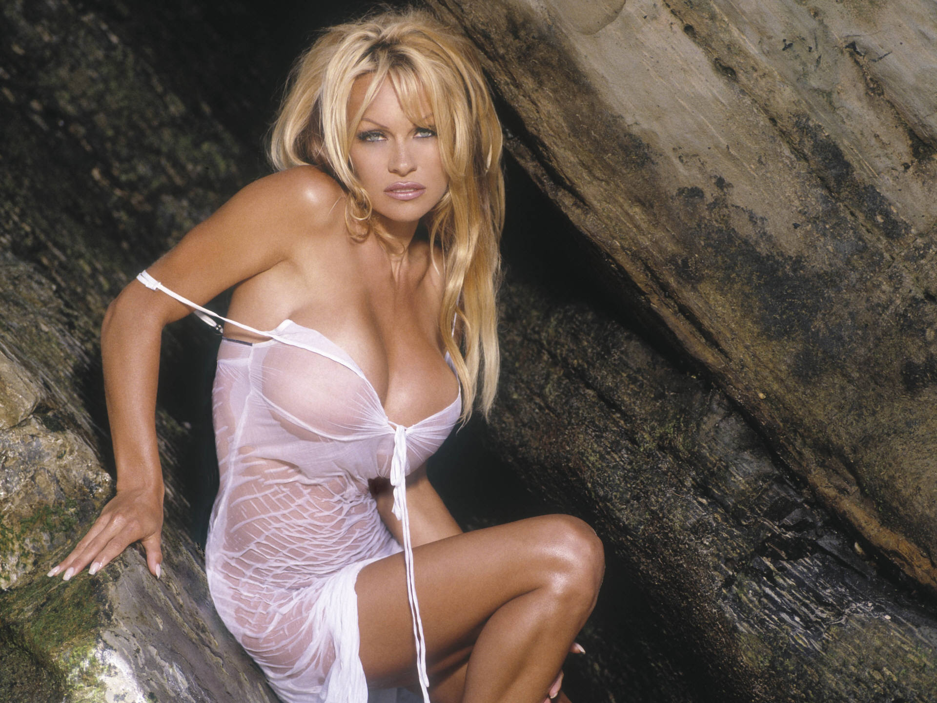 hot sexy and wet pamela anderson