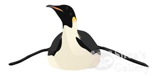 Emperor pinguin