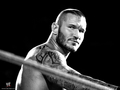 wwe - Randy Orton wallpaper